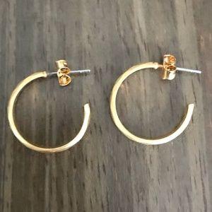 Francesca's Gold Hoop Earrings